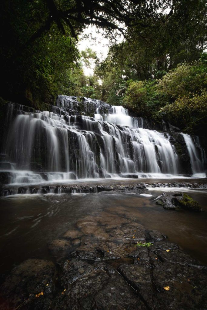 10 Things to Do in The Catlins with Kids
