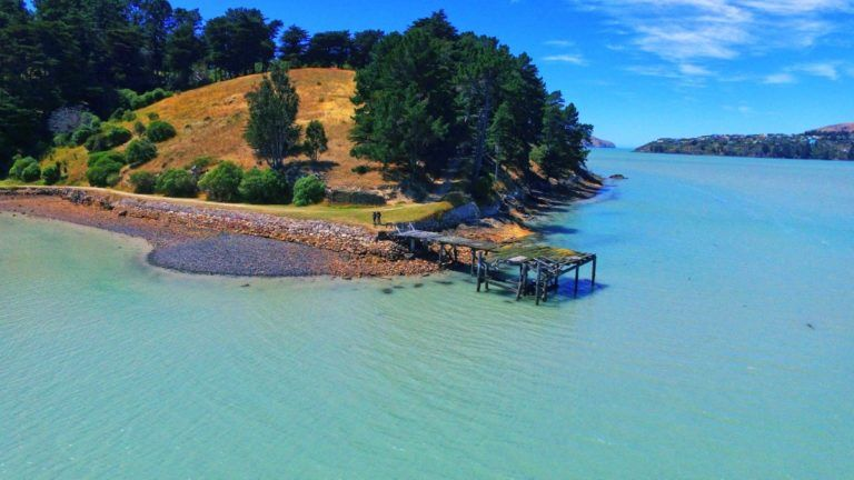 The Guide to Christchurch on a Budget