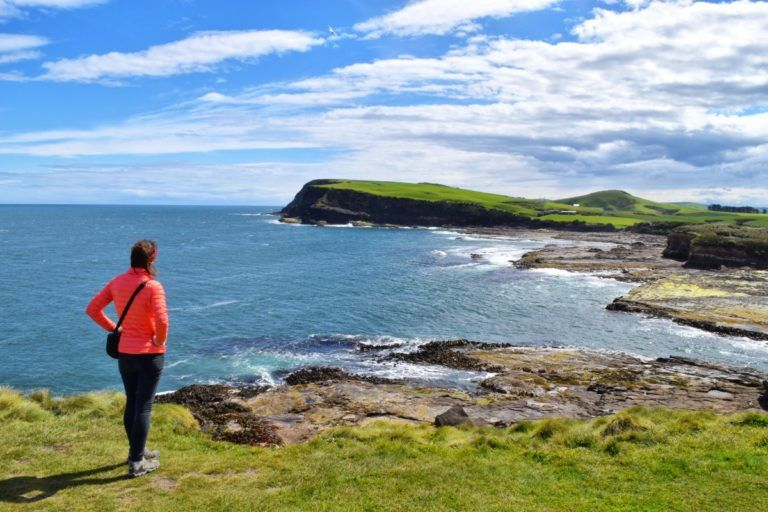 The Complete Guide to The Catlins