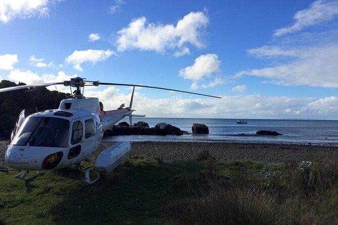 6 Luxury Activities on Stewart Island