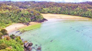10 Things to Do on Stewart Island with Kids