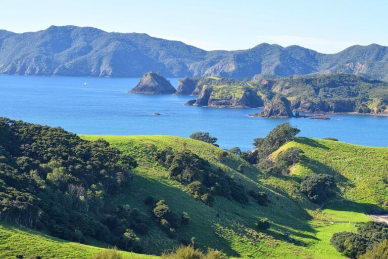 The Best Day Trips from Paihia