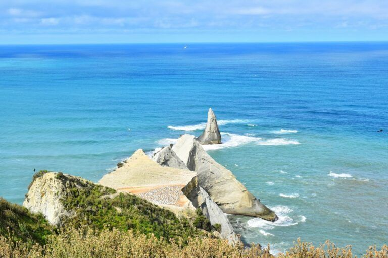 The Best Day Trips from Napier