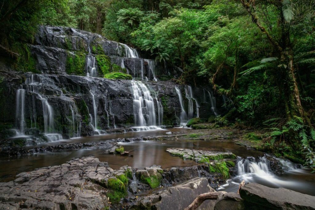 The Best Day Trips from Invercargill