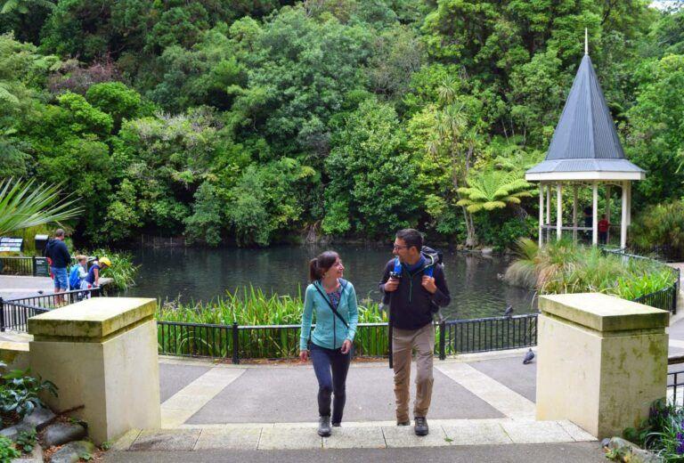 North Island Honeymoon Itinerary: One Week / 7 Days