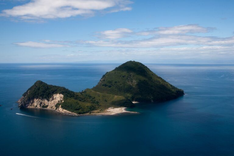 The Best Day Trips from Tauranga