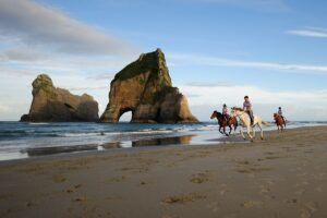 The Best Day Trips from Takaka
