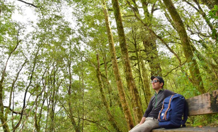 The Best Eco-Friendly Backpacks for New Zealand