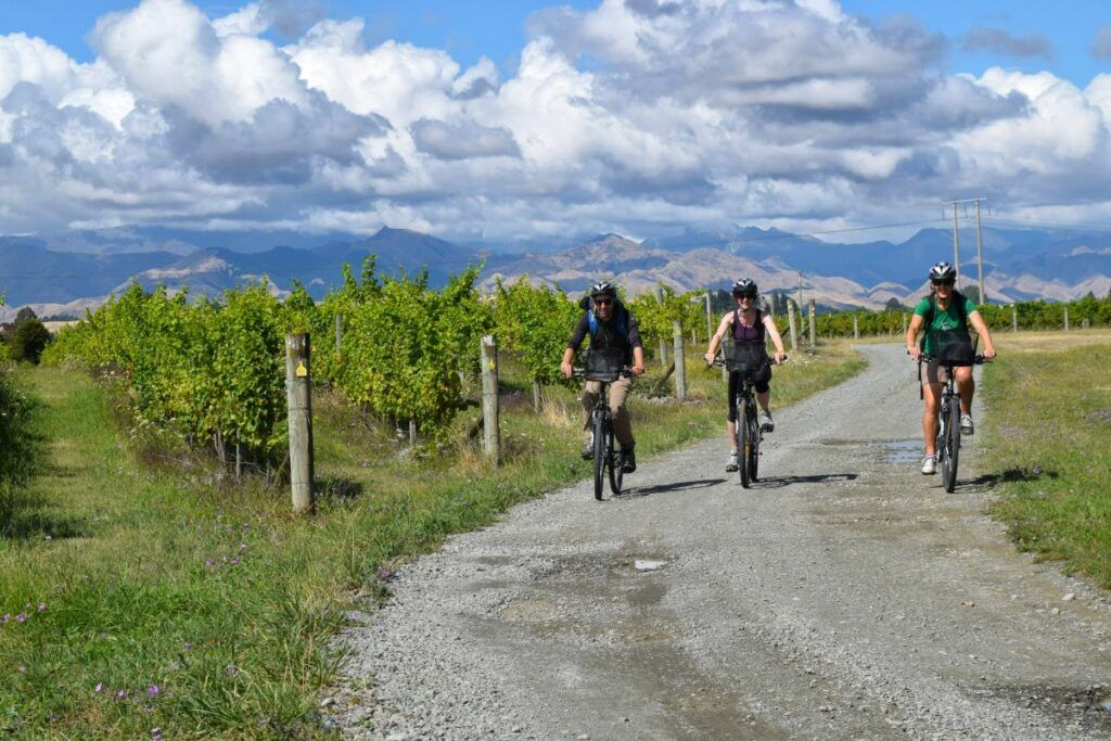 101 Things to Do in New Zealand: The Ultimate List