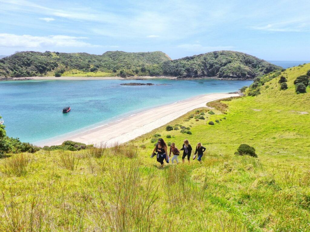 10 Best Cruises in the Bay of Islands
