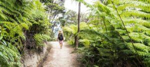 20 Best Short Walks on the South Island