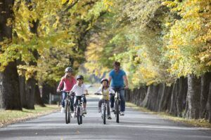 10 Best Family Bike Rides in New Zealand