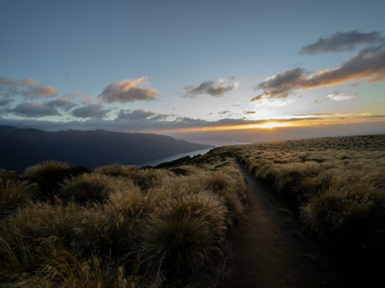 10 Must-Know Hiking Tips for New Zealand