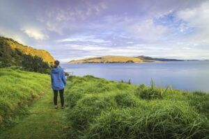 The Travel Guide to New Zealand on a Budget