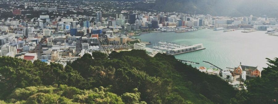 The 50 Best Accommodations in Wellington